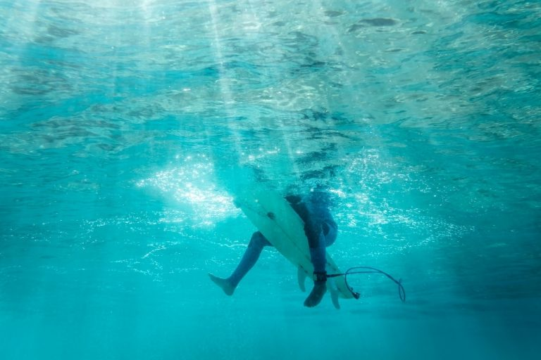 Do Sharks Attack Surfers?